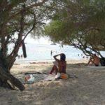 タオ島に行ってきました。Part3-フリーダムビーチ編